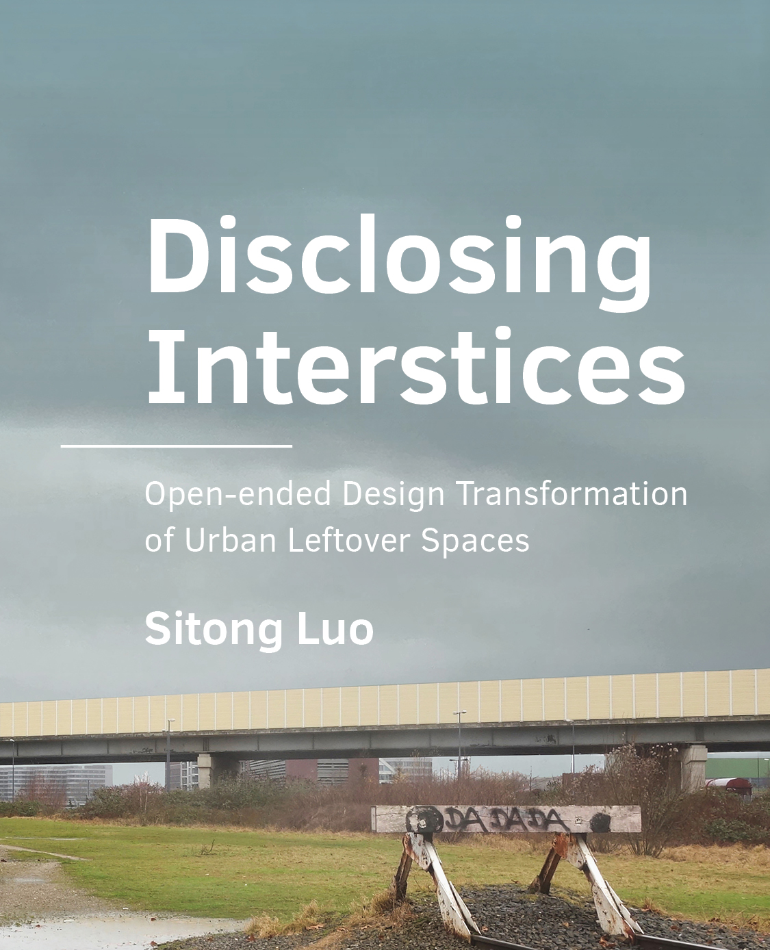 View No. 16 (2021): Disclosing Interstices